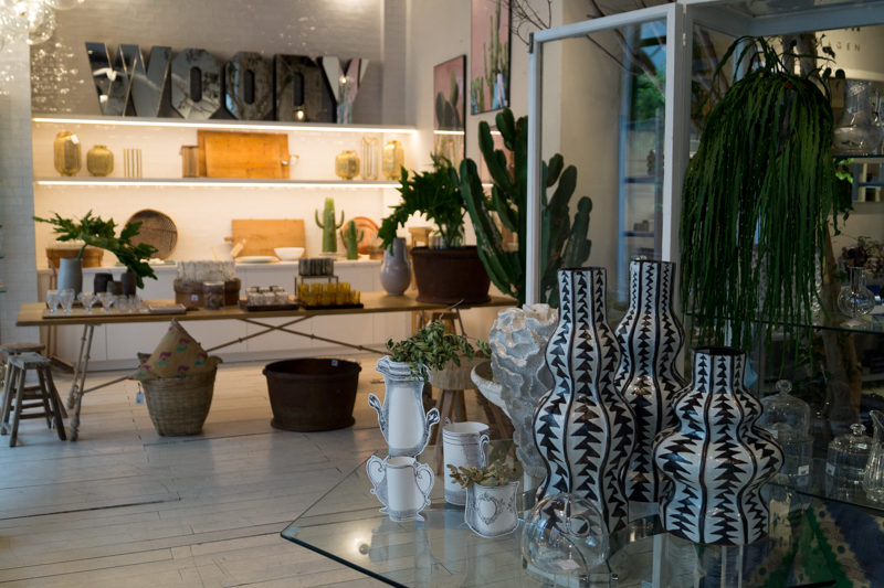 Mestizo contemporary Store Madri