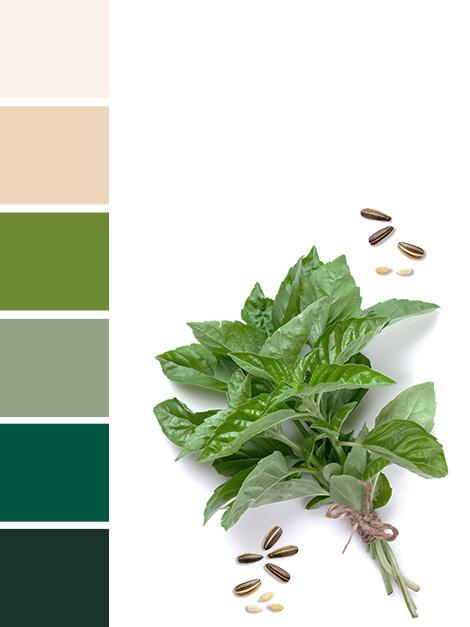 Maisons du Monde Spring-Summer 2018 Green Market color palette