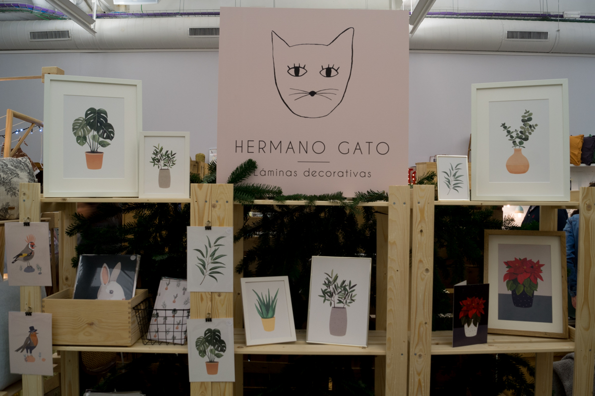 Hermano Gato at Singulares Inventory Room