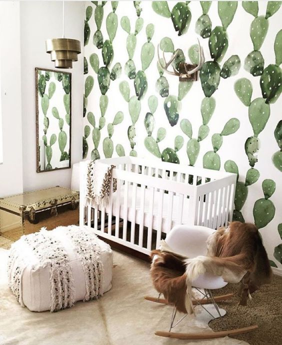 Cactus wallpaper in a nursery