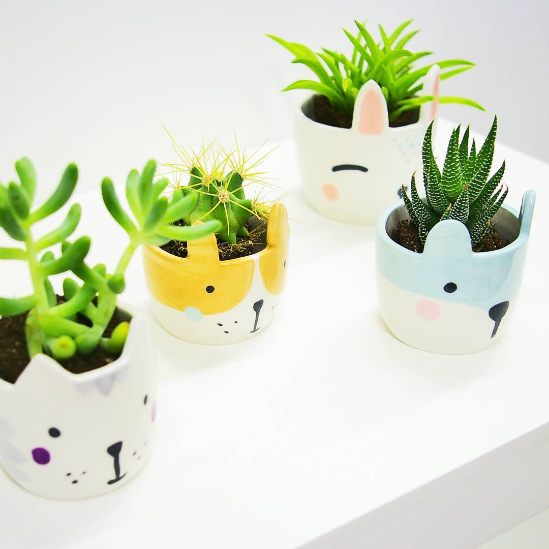 Naume Studio cat inspired houseplant pottery