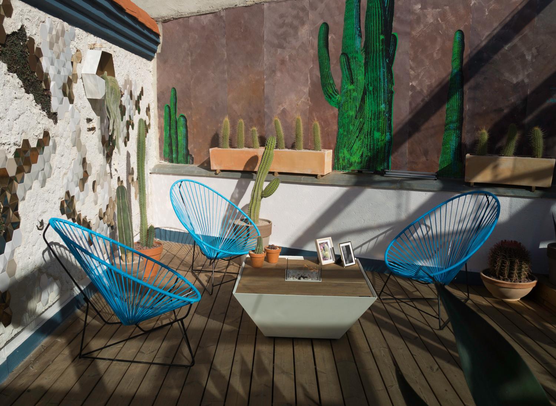 Cactus garden on the rooftop of Casa Decor 2018