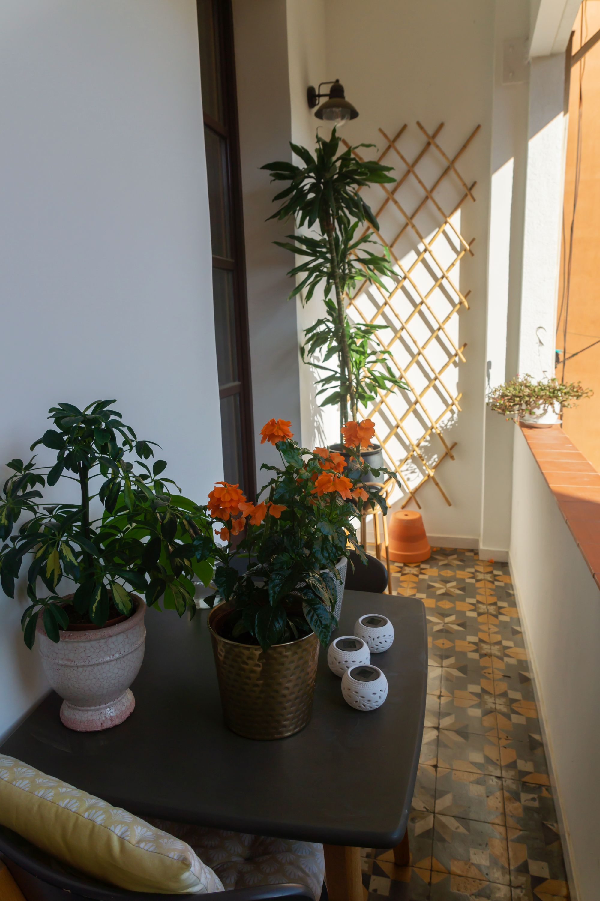 Gemma home tour Barcelona balcony with plants and tile floor